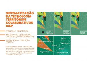 ICEP_boletim institucional_FINAL-revisado_page-0011